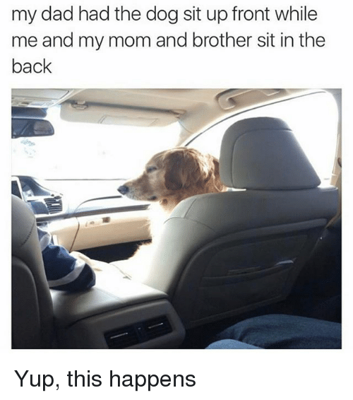 Dad, Memes, and Mom: my dad had the dog sit up front while  me and my mom and brother sit in the  back Yup, this happens