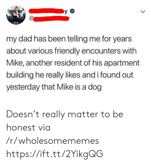 Dad, Been, and Another: my dad has been telling me for years  about various friendly encounters with  Mike, another resident of his apartment  building he really likes and i found out  yesterday that Mike is a dog Doesn't really matter to be honest via /r/wholesomememes https://ift.tt/2YikgQG