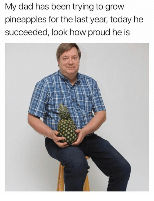 Dad, Today, and Proud: My dad has been trying to grovw  pineapples for the last year, today he  succeeded, look how proud he is