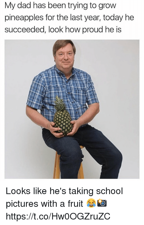 Dad, School, and Pictures: My dad has been trying to grow  pineapples for the last year, today he  succeeded, look how proud he is Looks like he's taking school pictures with a fruit 😂📸 https://t.co/Hw0OGZruZC