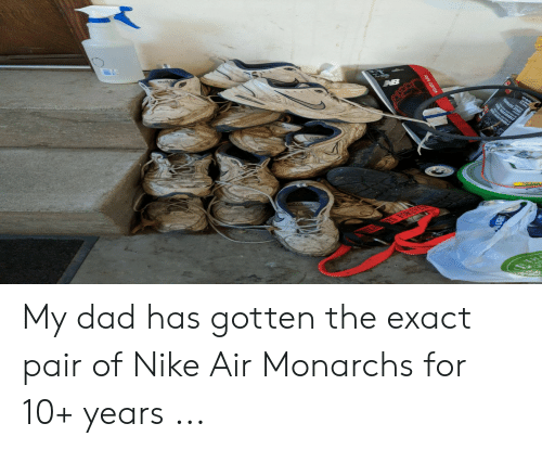 d530b772b95 My Dad Has Gotten the Exact Pair of Nike Air Monarchs for 10+ Years ...