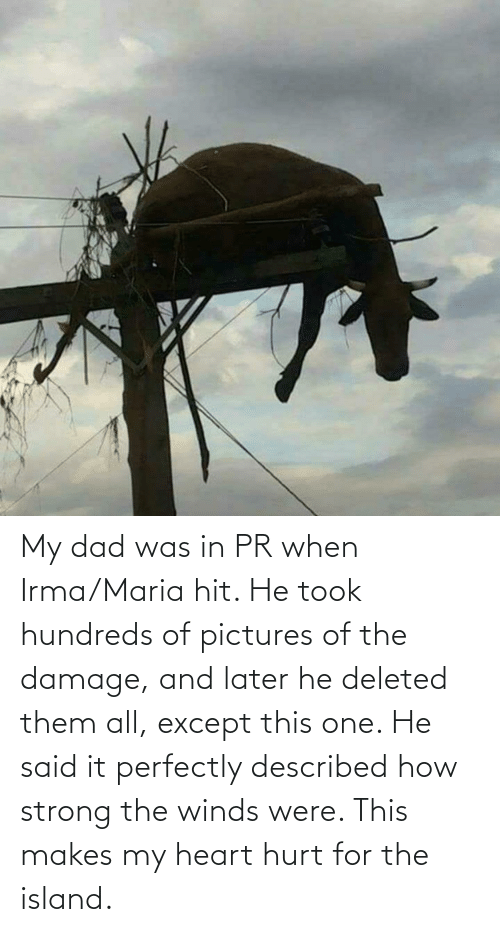 Dad, Heart, and Pictures: My dad was in PR when Irma/Maria hit. He took hundreds of pictures of the damage, and later he deleted them all, except this one. He said it perfectly described how strong the winds were. This makes my heart hurt for the island.