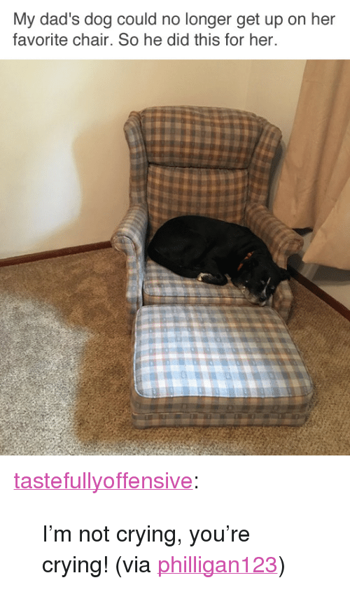 """Crying, Not Crying, and Reddit: My dad's dog could no longer get up on her  favorite chair. So he did this for her. <p><a href=""""http://tumblr.tastefullyoffensive.com/post/166200763373/im-not-crying-youre-crying-via-philligan123"""" class=""""tumblr_blog"""">tastefullyoffensive</a>:</p><blockquote><p>I'm not crying, you're crying! (via <a href=""""https://www.reddit.com/r/pics/comments/753eft/my_father_in_laws_dog_can_no_longer_get_up_on_his/"""" title=""""""""></a><a href=""""https://www.reddit.com/user/Philligan123"""">philligan123</a>)</p></blockquote>"""