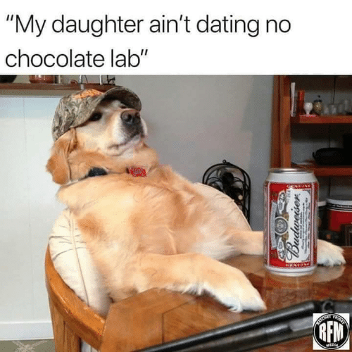 "Dating, Chocolate, and Budweiser: ""My daughter ain't dating no  chocolate lab""  GENEIN  AYCRER  TRICAT  RFM  NEDI  Budweiser"