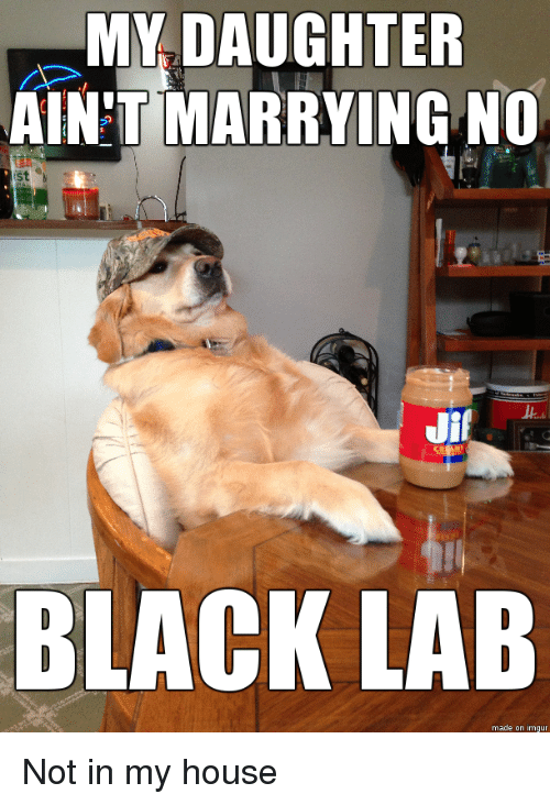 my daughter aint marrying no jif black lab made on 4262165 my daughter aint marrying no jif black lab made on imgu not in my