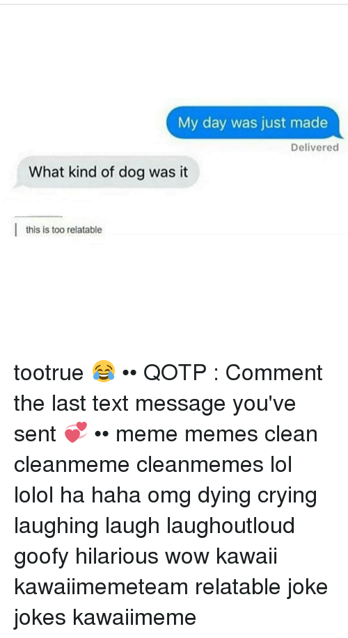 my day was just made delivered what kind of dog 11961794 ✅ 25 best memes about last text message last text message memes
