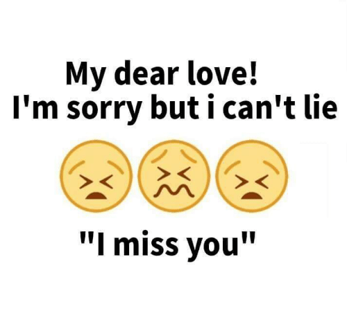 My dear love im sorry but i cant lie i miss you love meme on me im sorry but altavistaventures Choice Image