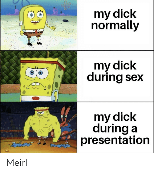 Sex, Dick, and MeIRL: my dick  normally  my dick  during sex  my dick  during a  presentation Meirl