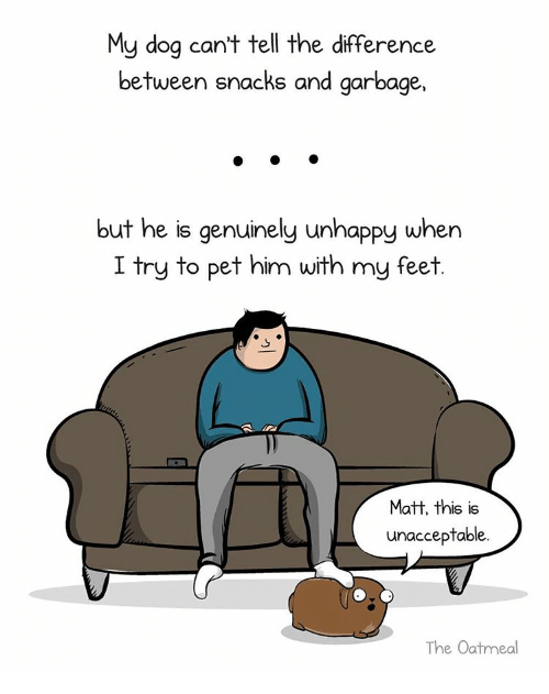 Memes, Pets, and 🤖: My dog can't tell the difference  between snacks and garbage,  but he is genuinely unhappy when  I try to pet him with my feet  Matt, this is  unacceptable.  The Oatmeal