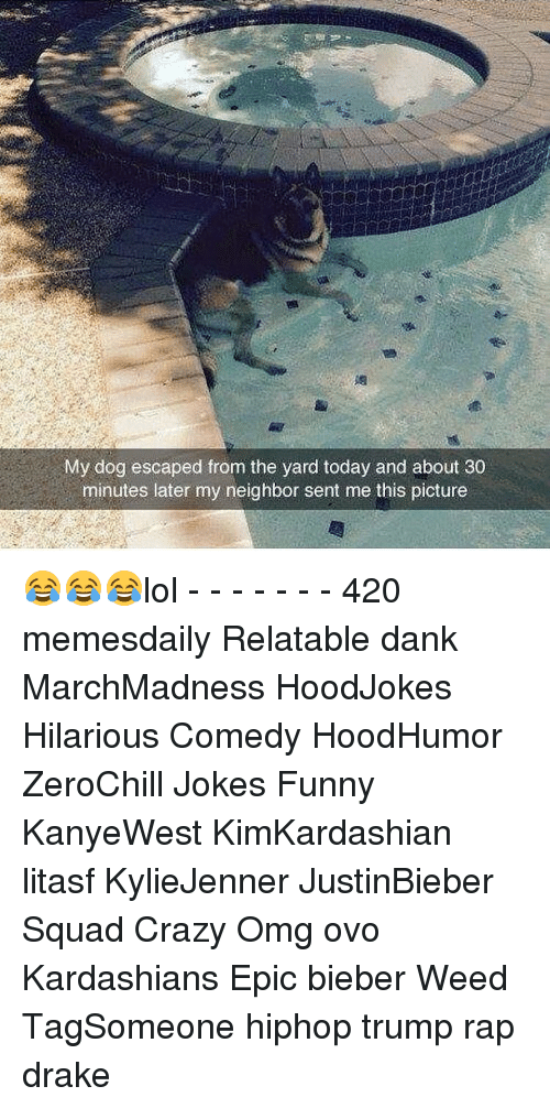 Memes, 🤖, and Weeds: My dog escaped from the yard today and about 30  minutes later my neighbor sent me this picture 😂😂😂lol - - - - - - - 420 memesdaily Relatable dank MarchMadness HoodJokes Hilarious Comedy HoodHumor ZeroChill Jokes Funny KanyeWest KimKardashian litasf KylieJenner JustinBieber Squad Crazy Omg ovo Kardashians Epic bieber Weed TagSomeone hiphop trump rap drake