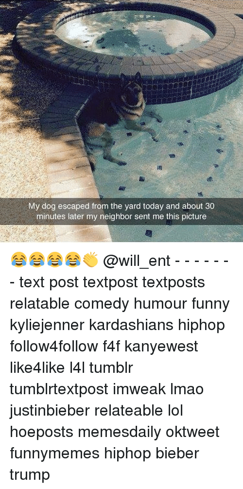 Memes, 🤖, and Bieber: My dog escaped from the yard today and about 30  minutes later my neighbor sent me this picture 😂😂😂😂👏 @will_ent - - - - - - - text post textpost textposts relatable comedy humour funny kyliejenner kardashians hiphop follow4follow f4f kanyewest like4like l4l tumblr tumblrtextpost imweak lmao justinbieber relateable lol hoeposts memesdaily oktweet funnymemes hiphop bieber trump