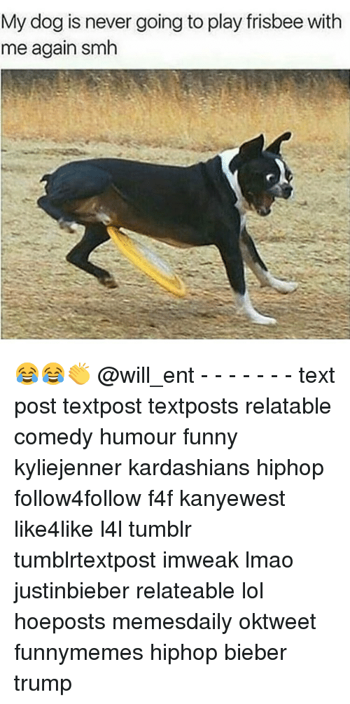 Memes, 🤖, and Dog: My dog is never going toplay frisbee with  me again smh 😂😂👏 @will_ent - - - - - - - text post textpost textposts relatable comedy humour funny kyliejenner kardashians hiphop follow4follow f4f kanyewest like4like l4l tumblr tumblrtextpost imweak lmao justinbieber relateable lol hoeposts memesdaily oktweet funnymemes hiphop bieber trump
