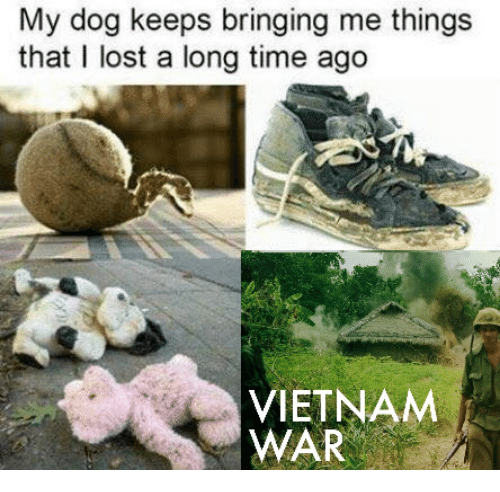 Lost, Time, and Vietnam: My dog keeps bringing me things  that I lost a long time ago  VIETNAM  WAR
