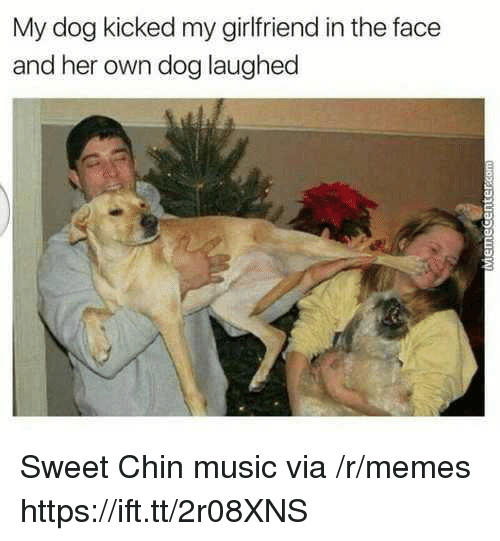 Memes, Music, and Girlfriend: My dog kicked my girlfriend in the face  and her own dog laughed Sweet Chin music via /r/memes https://ift.tt/2r08XNS