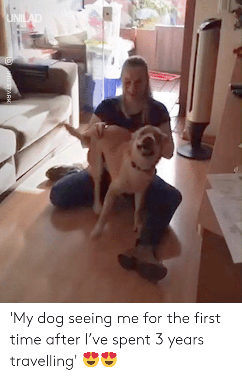 Dank, Time, and 🤖: 'My dog seeing me for the first time after I've spent 3 years travelling' 😍😍