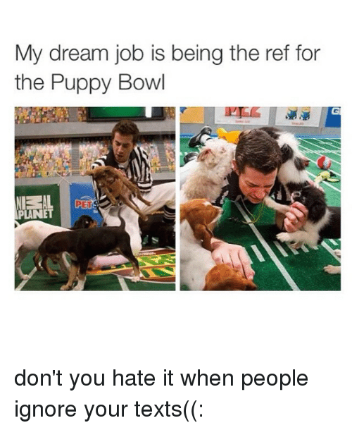 my dream job is being the ref for the puppy 1787031 25 best puppy bowl memes jobbing memes, my dreams memes, to do