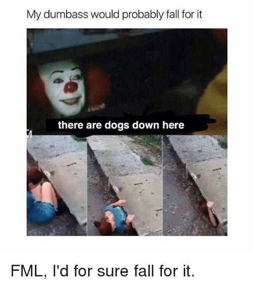 my dumbass would probably fall for it there are dogs 18663906 my dumbass would probably fall for it there are dogs down here fml,Get Down Here Meme