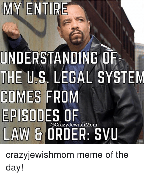 my entire understanding orf the u s legal system comes from 25542651 ✅ 25 best memes about law & order svu law & order svu memes,Meme Law
