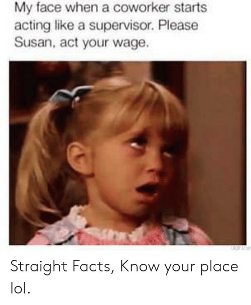 Facts, Funny, and Lol: My face when a coworker starts  acting like a supervisor. Please  Susan, act your wage Straight Facts, Know your place lol.