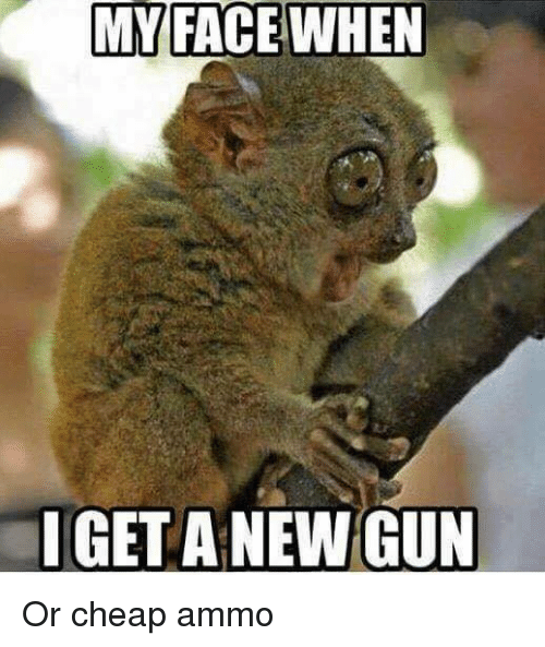 MY FACE WHEN I GET a NEW GUN or Cheap Ammo | Guns Meme on SIZZLE