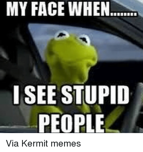 Kermit the Frog, My Face When, and Stupidity: MY FACE WHEN.  I SEE STUPID  PEOPLE Via Kermit memes
