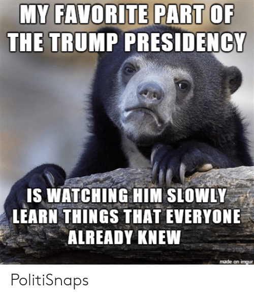 Imgur, Trump, and Him: MY FAVORITE PART OF  THE TRUMP PRESIDENCY  IS WATCHING HIM SLOWLY  LEARN THINGS THAT EVERYONE  ALREADY KNEW  made on imgur PolitiSnaps
