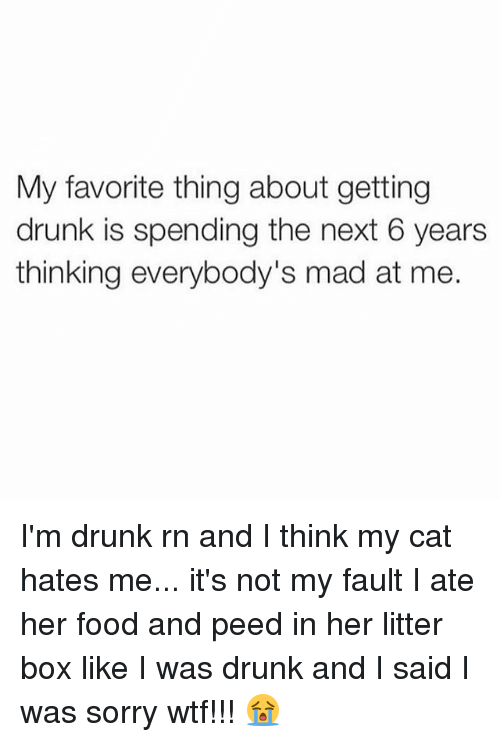 Drunk, Food, and Sorry: My favorite thing about getting  drunk is spending the next 6 years  thinking everybody's mad at me. I'm drunk rn and I think my cat hates me... it's not my fault I ate her food and peed in her litter box like I was drunk and I said I was sorry wtf!!! 😭