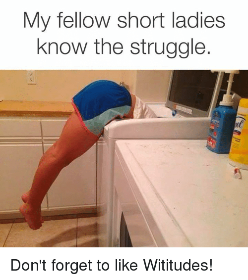 Dank, Struggle, and 🤖: My fellow short ladies  know the struggle Don't forget to like Wititudes!