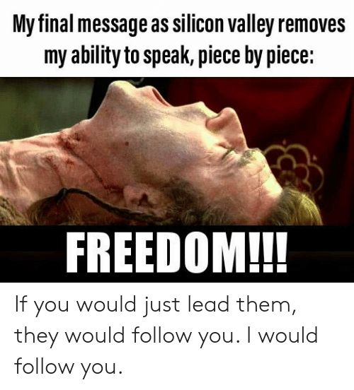 Ability, Freedom, and Libertarian: My final message as silicon valley remove  my ability to speak, piece by piece:  FREEDOM!!! If you would just lead them, they would follow you. I would follow you.