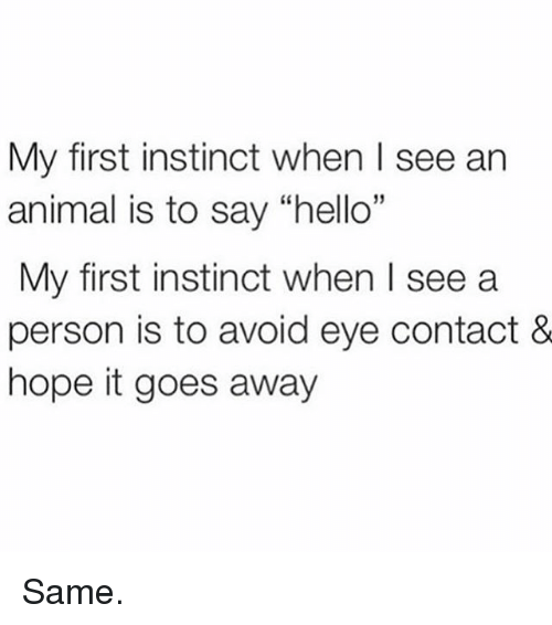 """Hello, Memes, and Animal: My first instinct when I see an  animal is to say """"hello  My first instinct when I see a  person is to avoid eye contact &  hope it goes away  15 Same."""