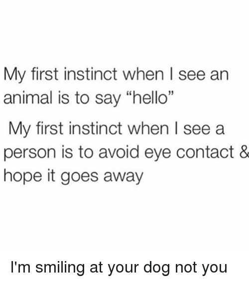 """Hello, Animal, and Girl Memes: My first instinct when l see ar  animal is to say """"hello""""  My first instinct when I see a  person is to avoid eye contact &  hope it goes away I'm smiling at your dog not you"""