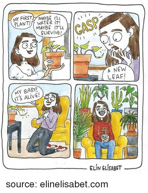 Alive, Water, and Baby: MY FIRST MAYBE tu  PLANT?/7 WATER İT!  MAYBE IT'LL  SURVIVE!  GASP  A NEW  LEAFI  MY BABY!  ITS ALIVE!  ELİV ELÍSABET- source: elinelisabet.com