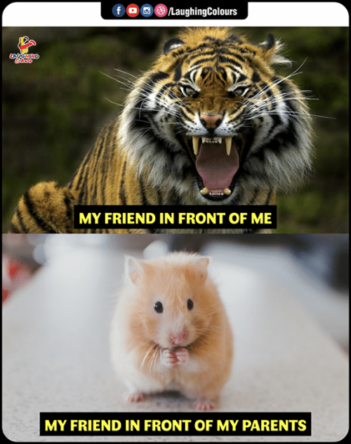 Parents, Indianpeoplefacebook, and Friend: MY FRIEND IN FRONT OF ME  MY FRIEND IN FRONT OF MY PARENTS