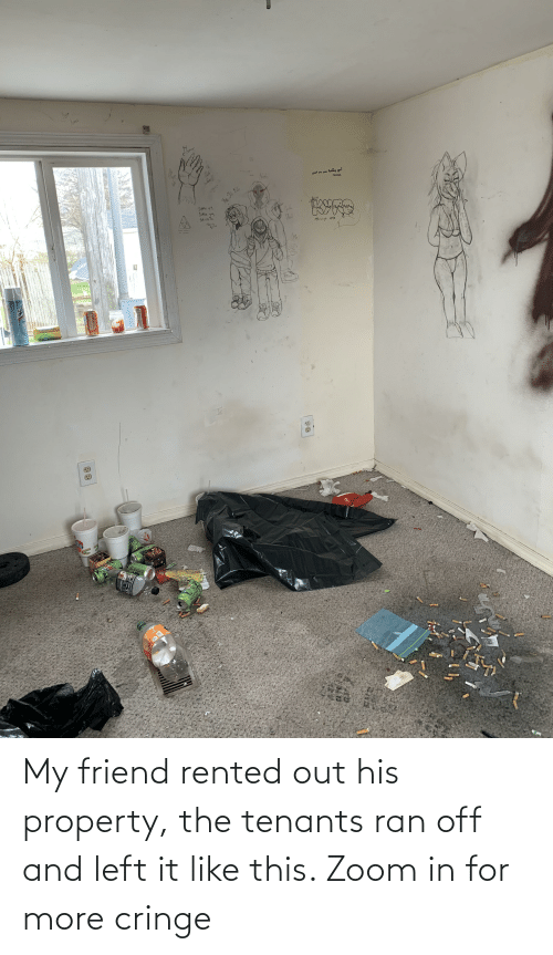 Zoom, Trashy, and Friend: My friend rented out his property, the tenants ran off and left it like this. Zoom in for more cringe