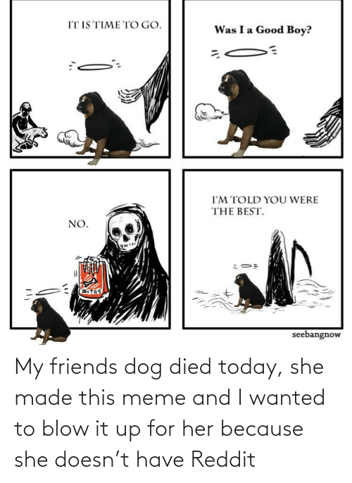 Friends, Meme, and Reddit: My friends dog died today, she made this meme and I wanted to blow it up for her because she doesn't have Reddit
