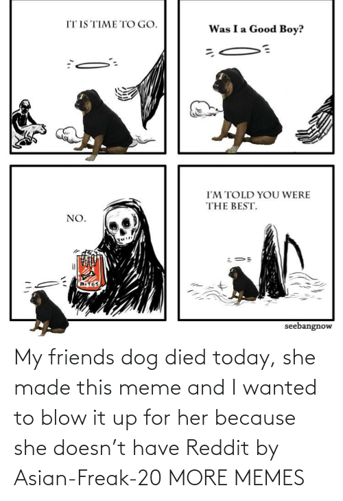 Asian, Dank, and Friends: My friends dog died today, she made this meme and I wanted to blow it up for her because she doesn't have Reddit by Asian-Freak-20 MORE MEMES