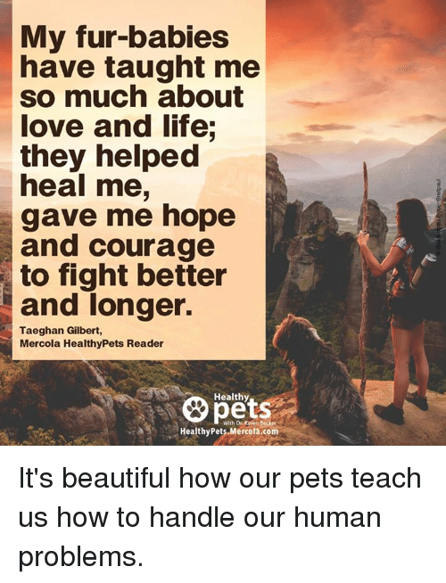 Memes, 🤖, and Human: My fur-babies  have taught me  so much about  love and life;  they helped  heal me,  gave me hope  and courage  to fight better  and longer.  Taeghan Gilbert,  Mercola HealthyPets Reader  Healthy  With Dr K en 8esker  Healthy Pets Mercola.com It's beautiful how our pets teach us how to handle our human problems.