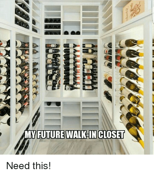 Memes, 🤖, And Closet: MY FUTURE WALK IN CLOSET Need This!