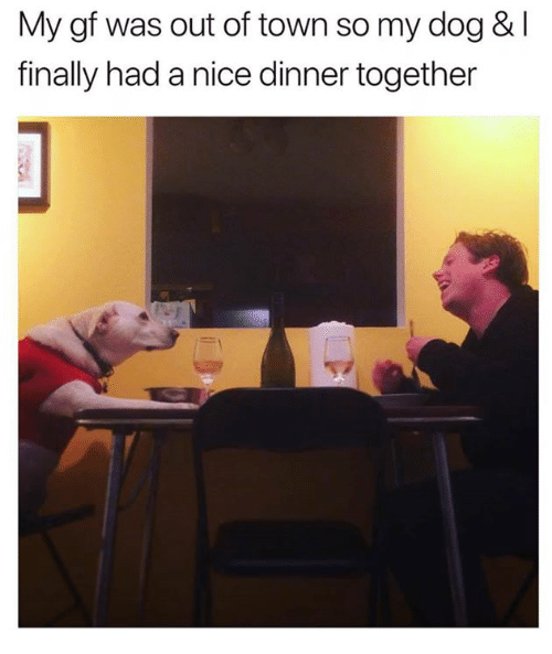 Dank, Nice, and 🤖: My gf was out of town so my dog & l  finally had a nice dinner together