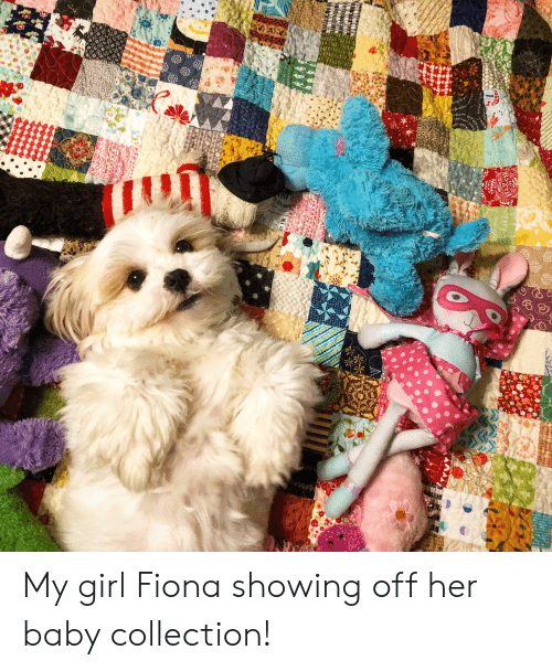 My Girl Fiona Showing Off Her Baby Collection! | Girl Meme on ME ME