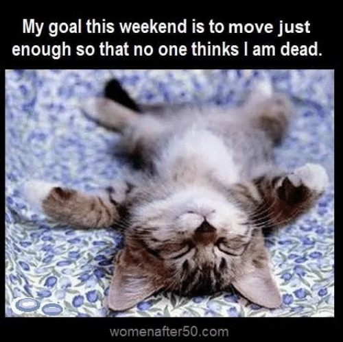 Memes, Goal, and 🤖: My goal this weekend is to move just  enough so that no one thinks l am dead  womenafter50.com