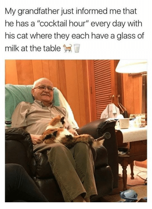 """Cat, Table, and Glass: My grandfather just informed me that  he has a """"cocktail hour"""" every day with  his cat where they each have a glass of  milk at the table"""