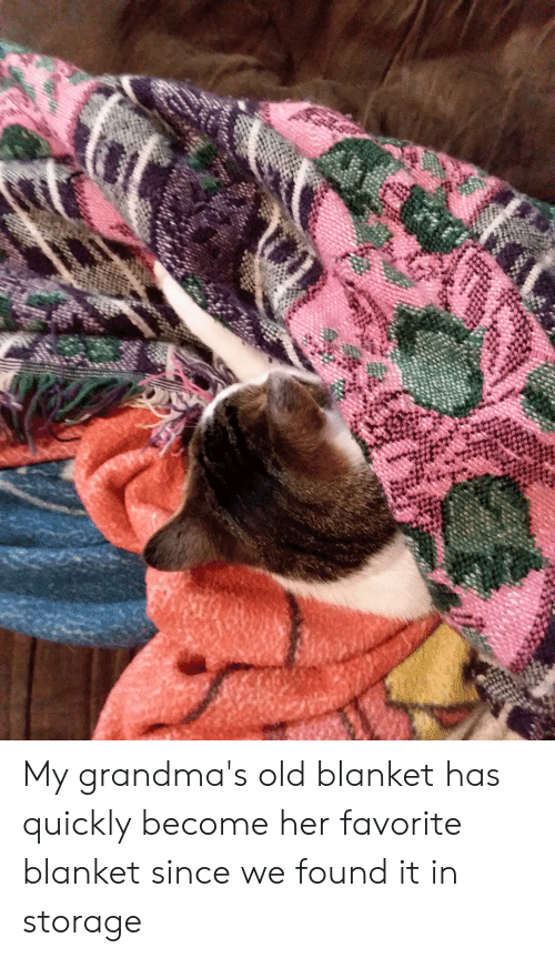 Old, Her, and  Blanket: My grandma's old blanket has quickly become her favorite blanket since we found it in storage