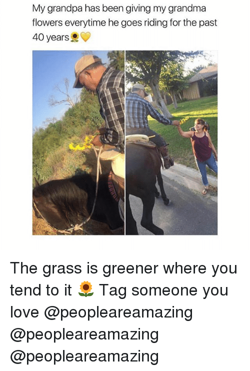 Grandma, Love, and Memes: My grandpa has been giving my grandma  flowers everytime he goes riding for the past  40 years The grass is greener where you tend to it 🌻 Tag someone you love @peopleareamazing @peopleareamazing @peopleareamazing