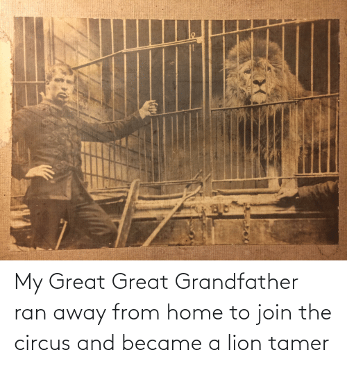 Home, Lion, and Ran: My Great Great Grandfather ran away from home to join the circus and became a lion tamer