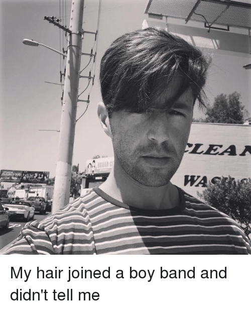 Memes, Hair, and Band: My hair joined a boy band and didn't tell me