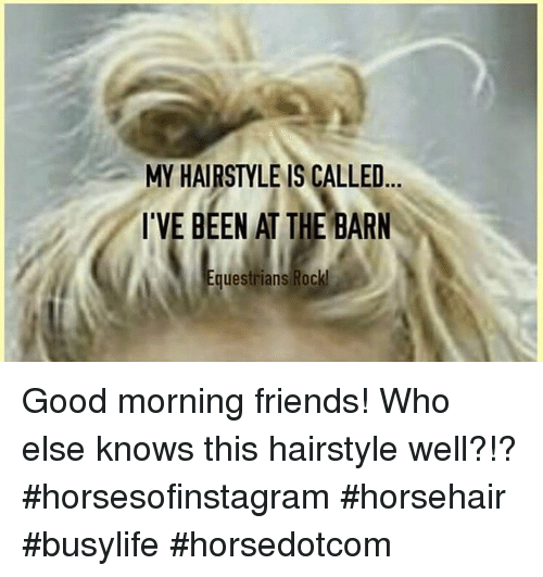Memes, Good Morning, and Hairstyles: MY HAIRSTYLE ISCALLED  I'VE BEEN AT THE BARN  Equestrians Rock! Good morning friends! Who else knows this hairstyle well?!? #horsesofinstagram #horsehair #busylife #horsedotcom