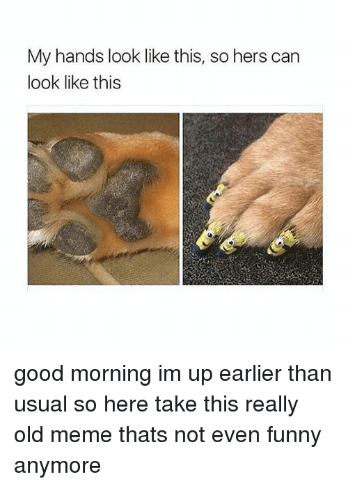 Funny, Meme, and Memes: My hands look like this, so hers can  look like this good morning im up earlier than usual so here take this really old meme thats not even funny anymore