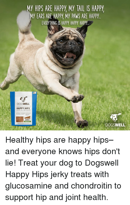 Hips Don't Lie, Memes, and Happy: MY HIPS ARE HAPPY My TAIL IS HAPPY  MY EARS ARE HAPPY My PAWS ARE HAPPY  EVERYTHING IS HAPPY HAPPY HAPPY  DOGSWELL  HAPPY HIPS  JERKY  DOGSWELL Healthy hips are happy hips–and everyone knows hips don't lie! Treat your dog to Dogswell Happy Hips jerky treats with glucosamine and chondroitin to support hip and joint health.