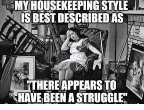 MY HOUSEKEEPING STYLE IS BEST DESCRIBED AS THERE APPEARS TO HAVE BEEN a STRUGGLE   Struggle Meme ...